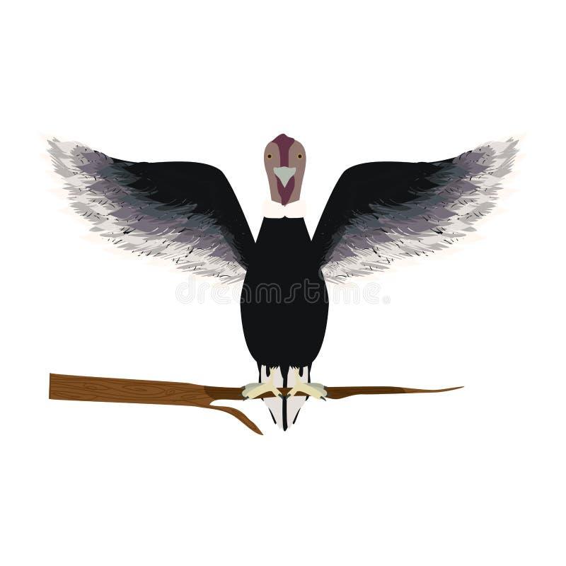 oiseau animal de condor dans la branche illustration stock