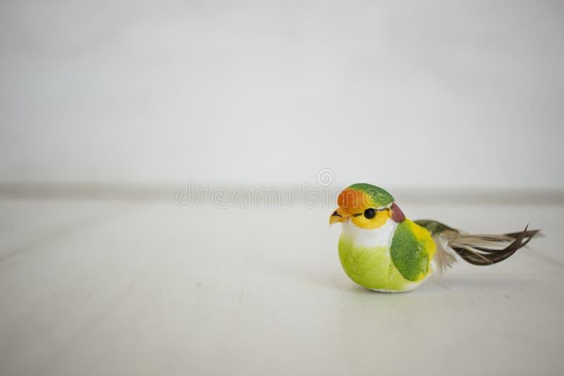 Oiseau coloré photos stock