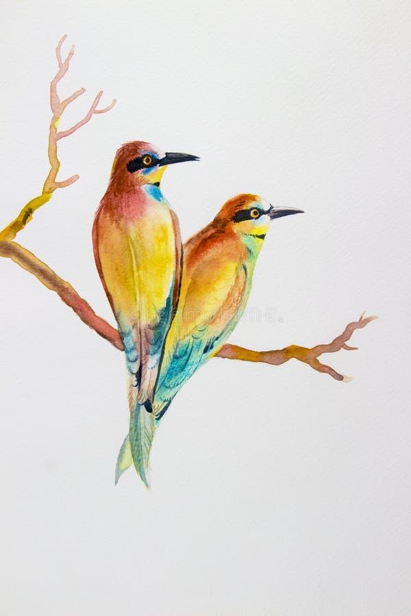 Oiseau d'aquarelle peignant coloré réaliste original des amants d'oiseau illustration de vecteur