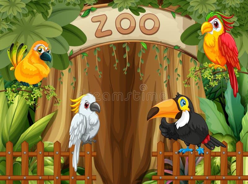 Oiseau dans le zoo illustration stock