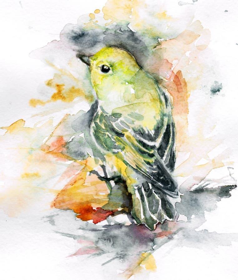 Oiseau de couleur illustration libre de droits