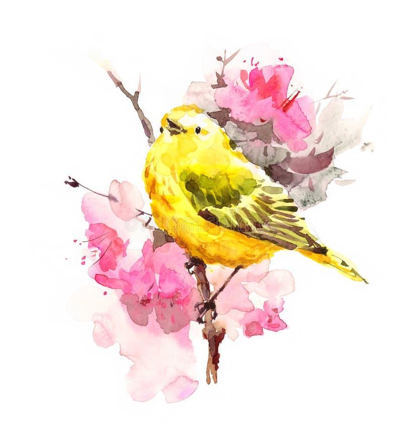 Oiseau de fauvette jaune sur la branche avec l'illustration d'automne d'aquarelle de fleurs peinte à la main illustration libre de droits