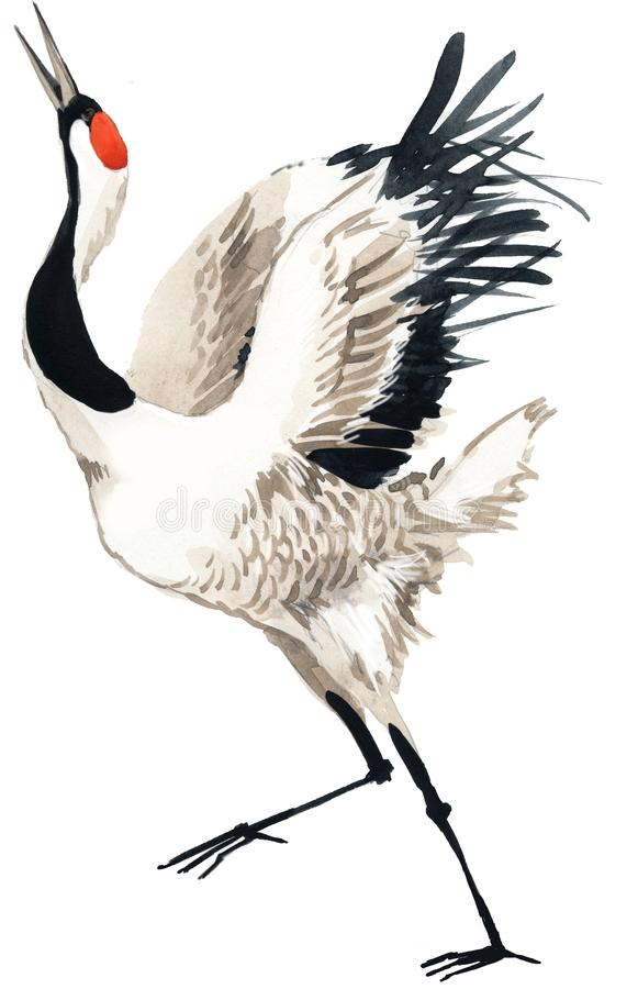 Oiseau de grue d'aquarelle illustration de vecteur