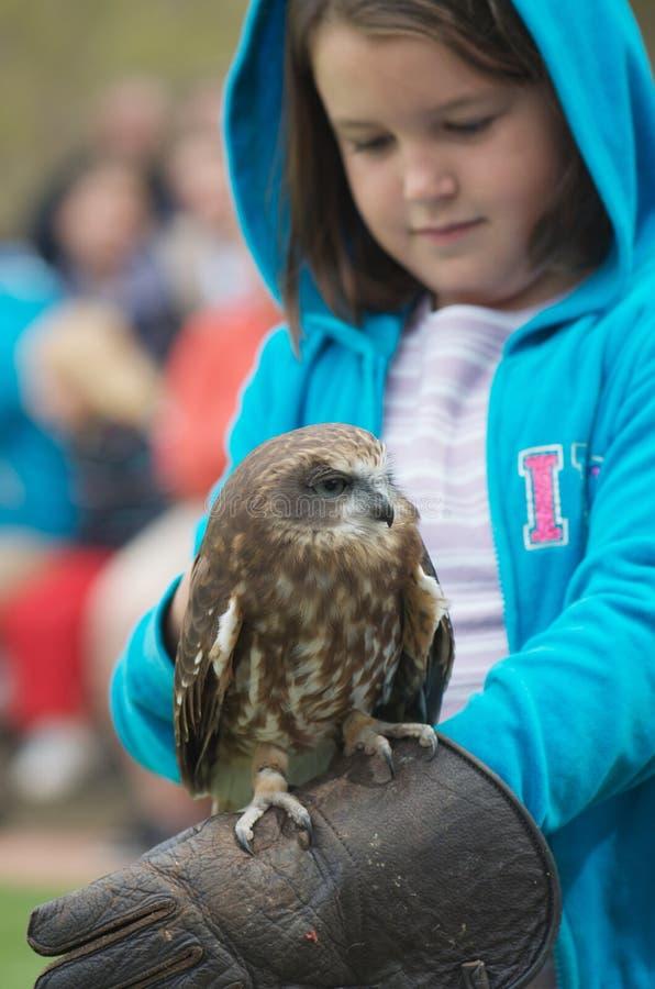 Oiseau de proie et d'enfant photographie stock libre de droits