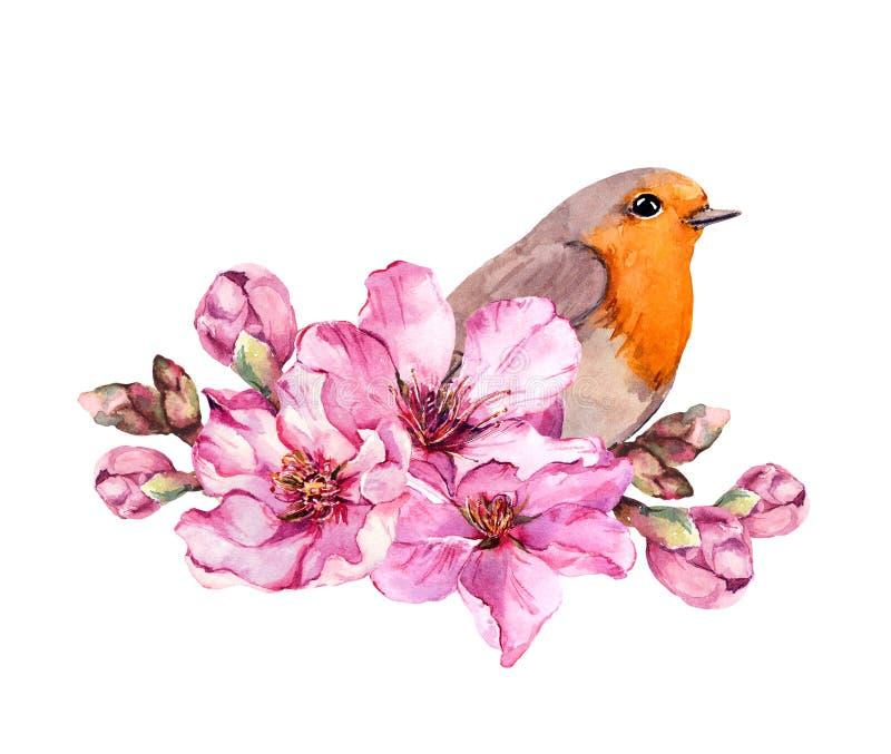 Oiseau de ressort sur la branche fleurissante avec les fleurs roses de la cerise, Sakura, pomme, fleurs d'amande watercolor illustration de vecteur