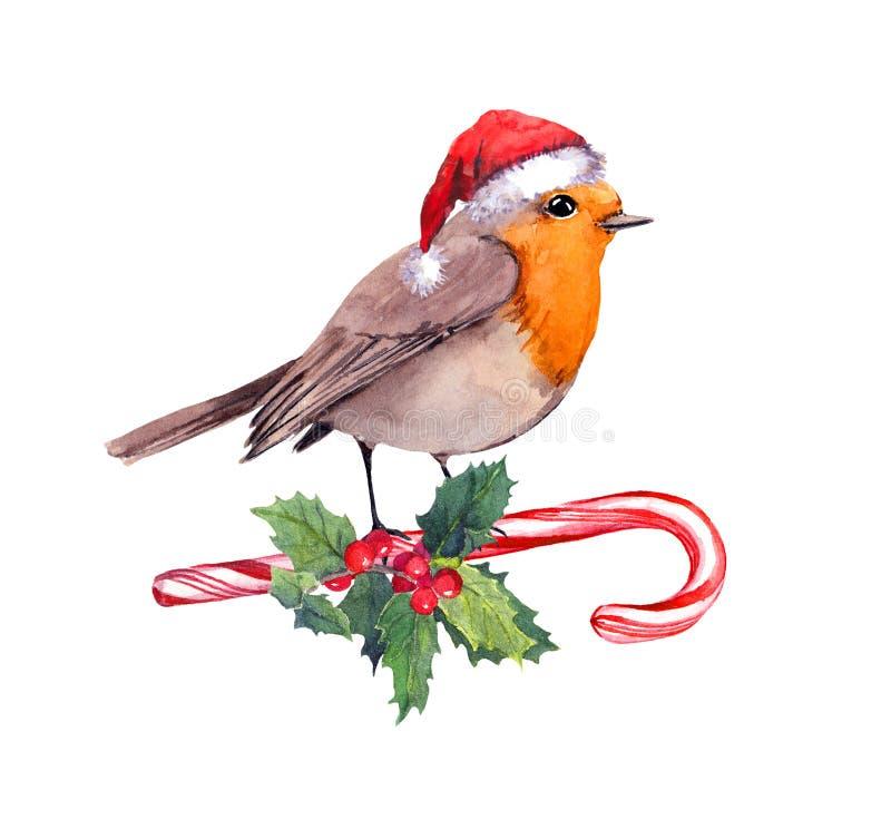 Oiseau de Robin dans le chapeau rouge de Santa sur la canne de sucrerie et le gui de Noël Carte d'aquarelle pour Noël illustration libre de droits