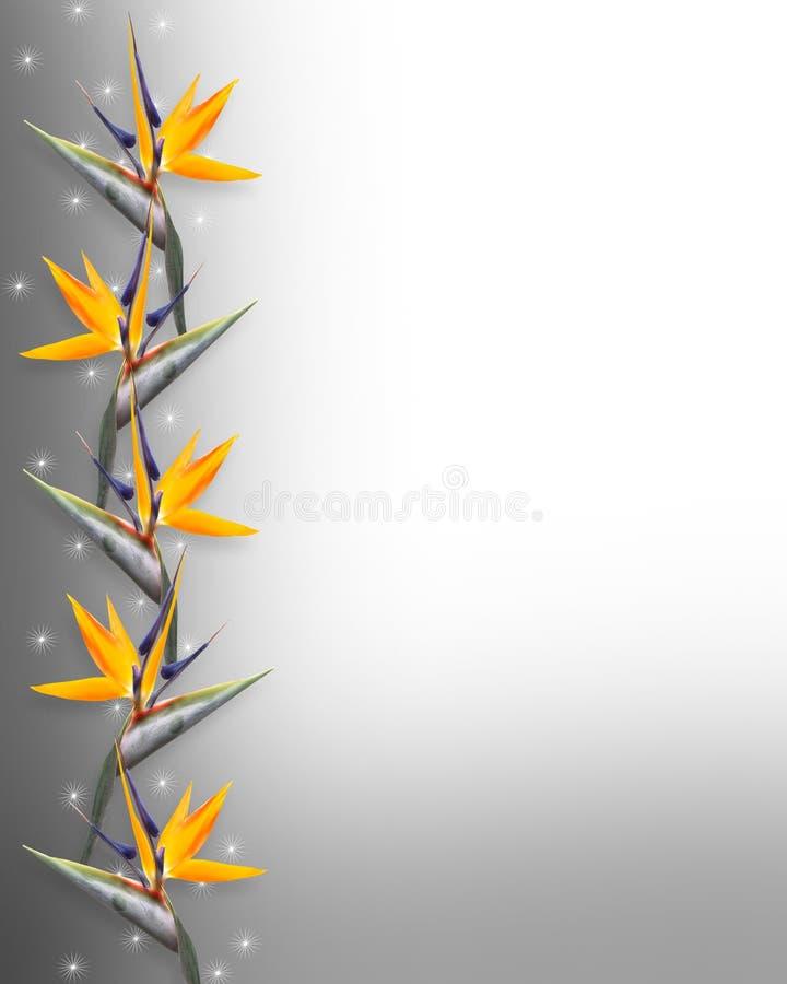 Oiseau de Strelitzia floral de cadre de paradis illustration de vecteur