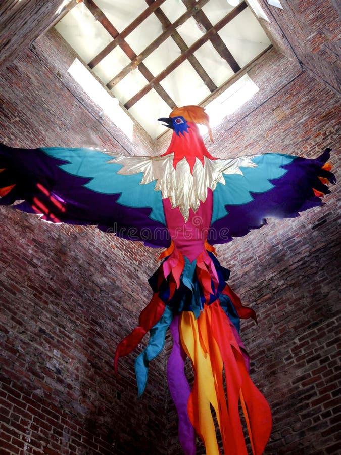 Oiseau de vol coloré image stock
