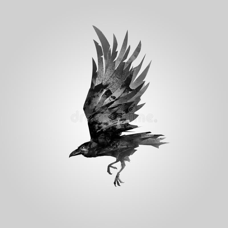 Oiseau de vol tiré Raven illustration libre de droits