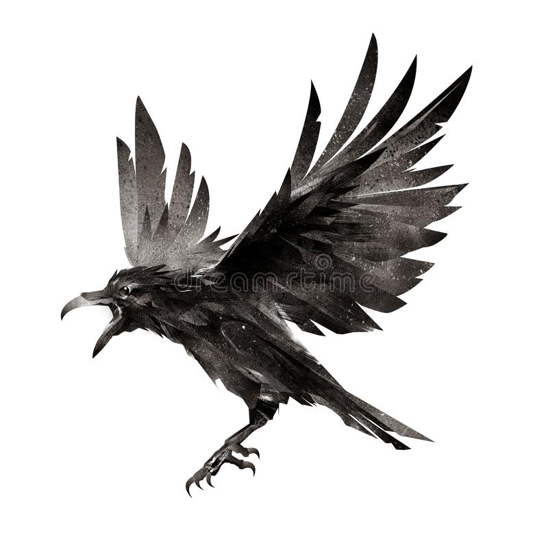 Oiseau de vol tiré sur le fond blanc illustration stock