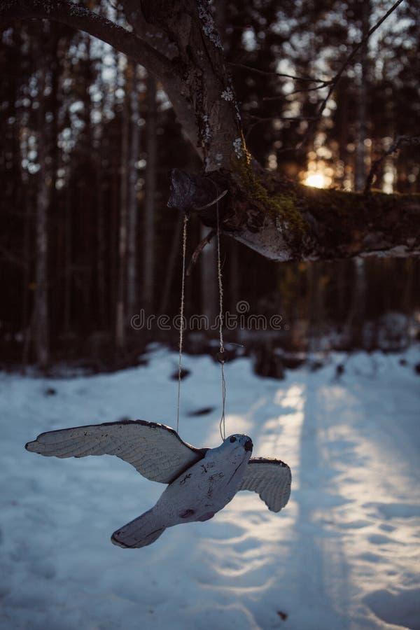 Oiseau en bois dans le jardin d'hiver photo stock