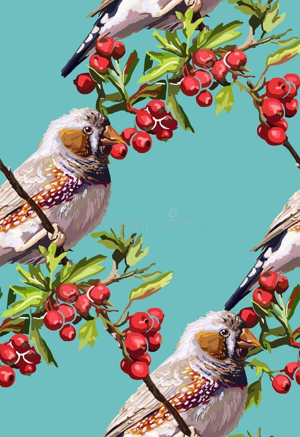 oiseau, fleur et sorbe colorés illustration libre de droits