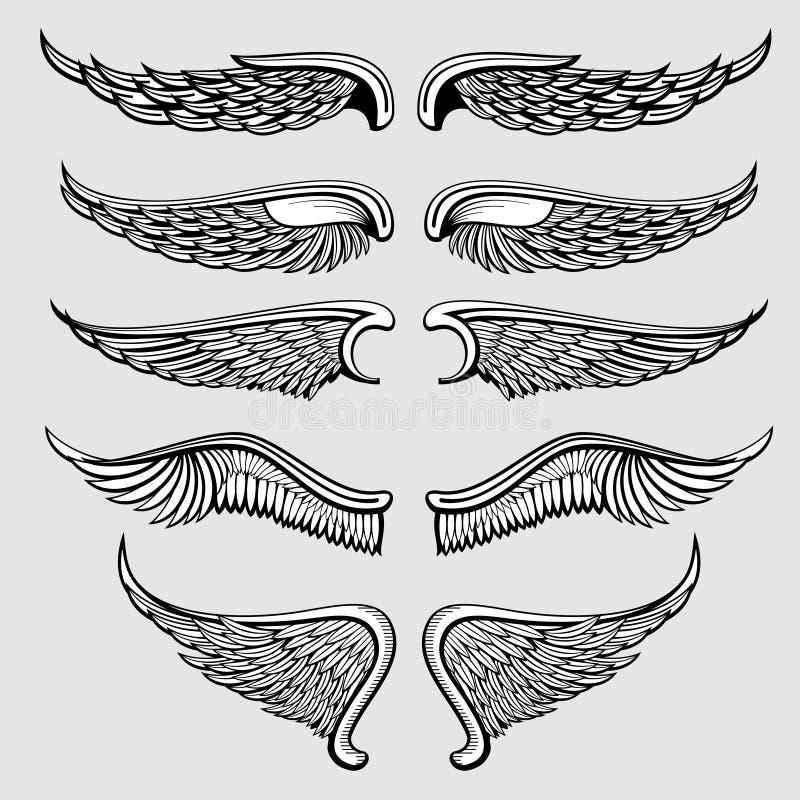 Oiseau héraldique, ensemble de vecteur d'ailes d'ange illustration de vecteur