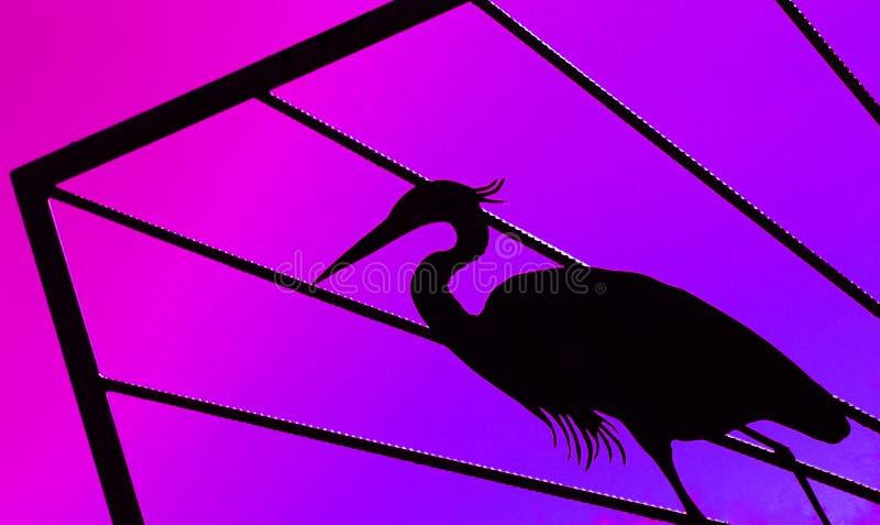 Oiseau pourpré photos stock