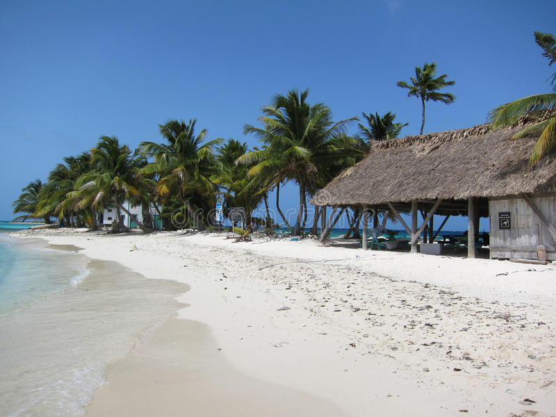 Oiseau riant Caye, Belize images stock