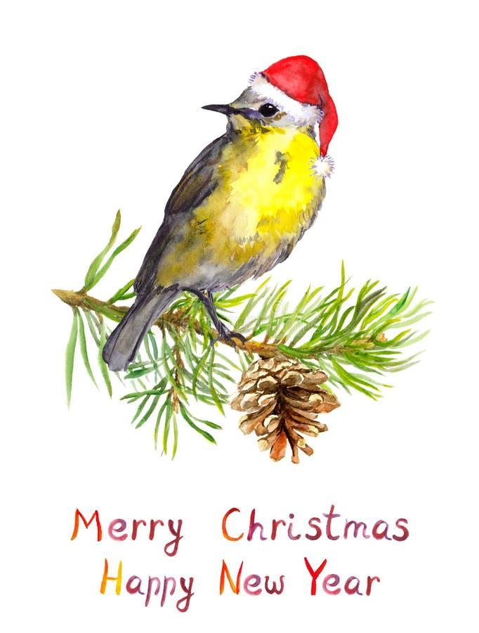 Oiseau sur l'arbre de Noël avec le cône de pin Carte postale d'aquarelle illustration libre de droits