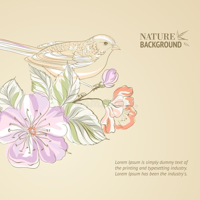 Oiseau tiré par la main sur la branche de sacura. illustration stock