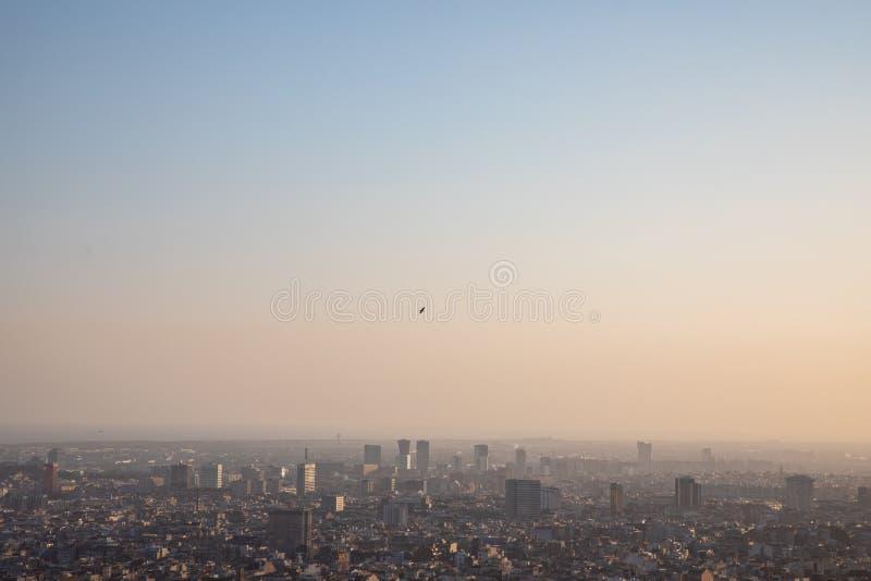 Oiseau volant plus de la ville de Barcelone et de la mer Méditerranée photos stock