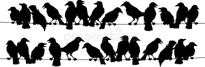 Oiseaux illustration stock