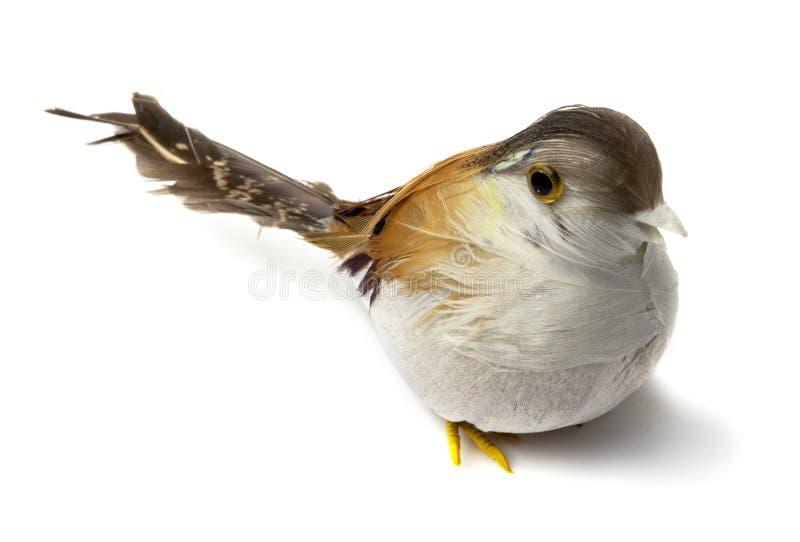 Oiseaux artificiels de clavette photo stock image du for Oiseaux artificiels de decoration