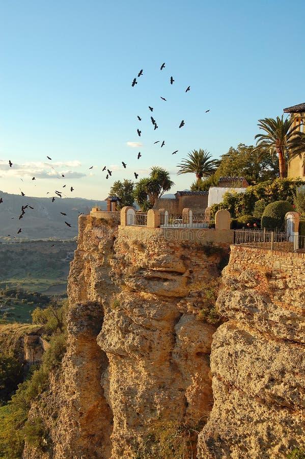 Oiseaux au-dessus des falaises - Ronda photo libre de droits