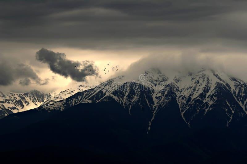 Oiseaux au-dessus des montagnes photographie stock
