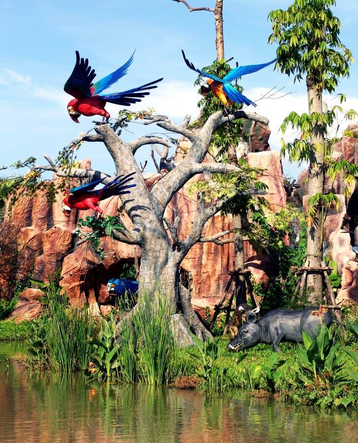 Oiseaux colorés photo libre de droits