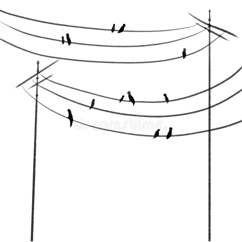 Oiseaux d'impression sur les fils une ligne illustration de vecteur d'aspiration illustration libre de droits