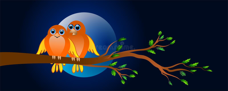 Oiseaux dans l'amour illustration stock