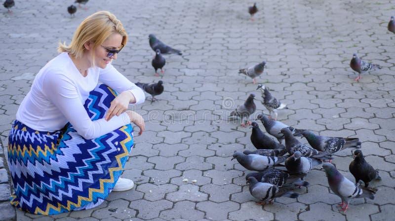 Oiseaux de alimentation de colombe de fille Colombes de groupe sur les festins de attente de place de ville Générosité de part Vi image stock