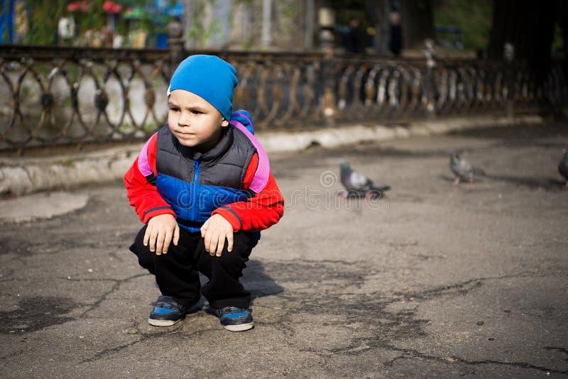 Oiseaux de alimentation mignons de petit garçon en parc de ville Temps d'automne ou de printemps photo stock