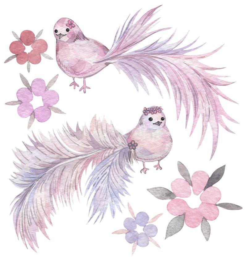 Oiseaux de bande dessinée avec les queues et les fleurs givrées Ensemble tiré par la main d'aquarelle illustration stock