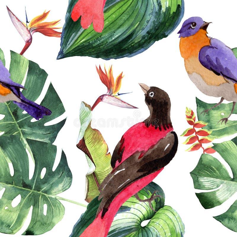 Oiseaux de ciel de modèle de paradis dans une faune par style d'aquarelle illustration libre de droits