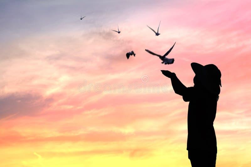 oiseaux de libération de personnes de silhouette à être liberté photos stock