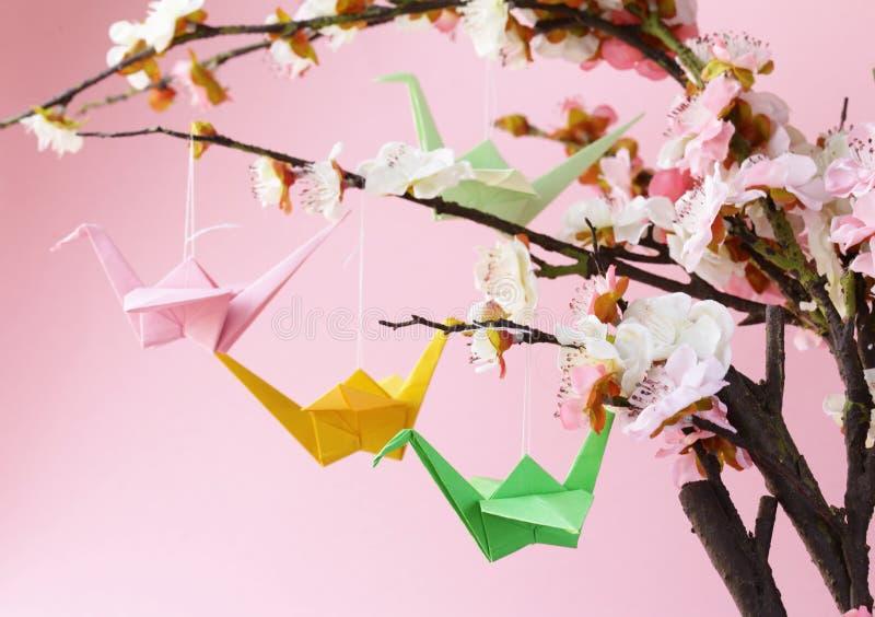 Oiseaux de papier colorés d'origami sur les branches fleurissantes de la cerise photographie stock libre de droits