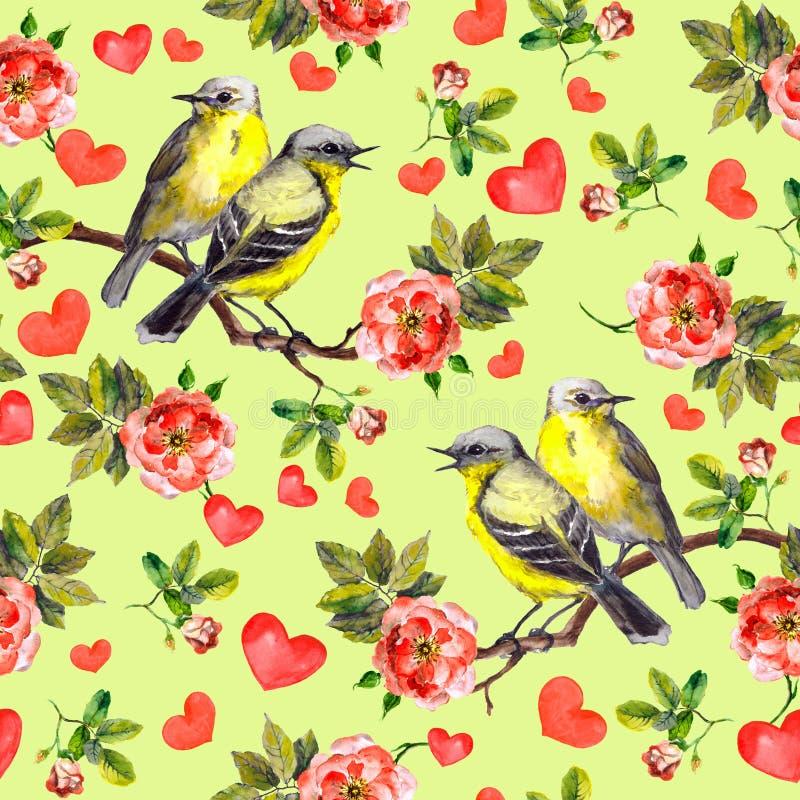 Oiseaux de ressort, fleurs romantiques de roses rouges Configuration sans joint watercolor illustration de vecteur