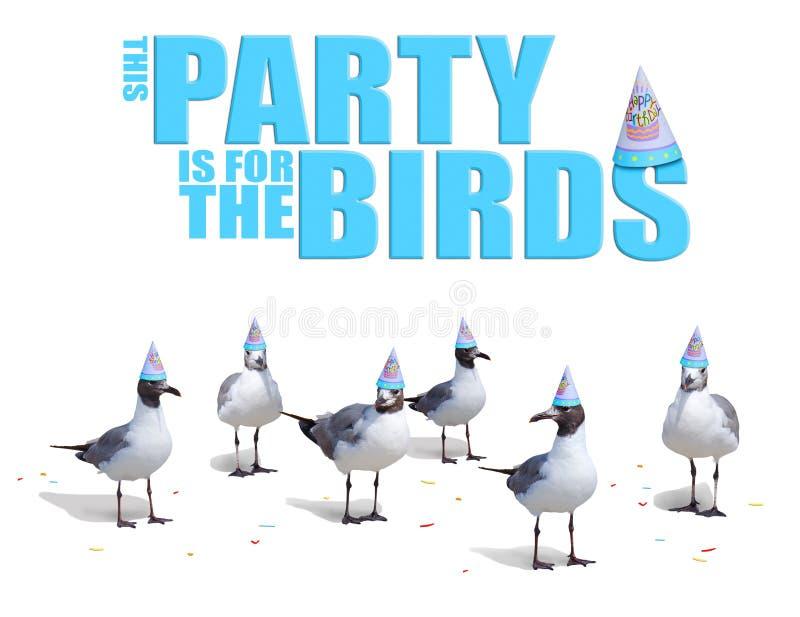 Oiseaux drôles portant la carte de chapeaux de fête d'anniversaire illustration stock