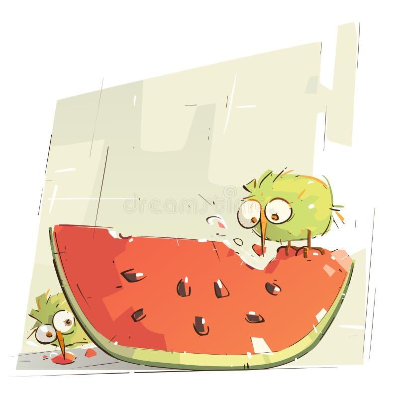 Oiseaux minuscules mangeant la pastèque illustration libre de droits