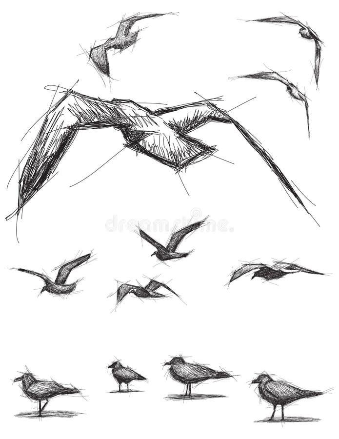 Oiseaux peu précis illustration de vecteur