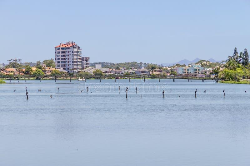 Oiseaux se reposant au lac Violao en Torres images stock