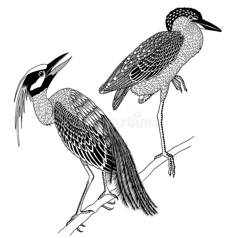 Oiseaux tirés par la main de héron illustration stock