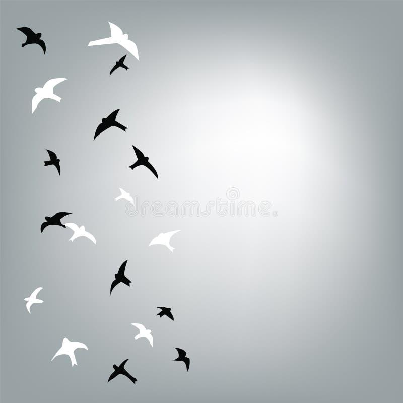 Oiseaux volant à l'arrière-plan de ciel pour la carte illustration libre de droits