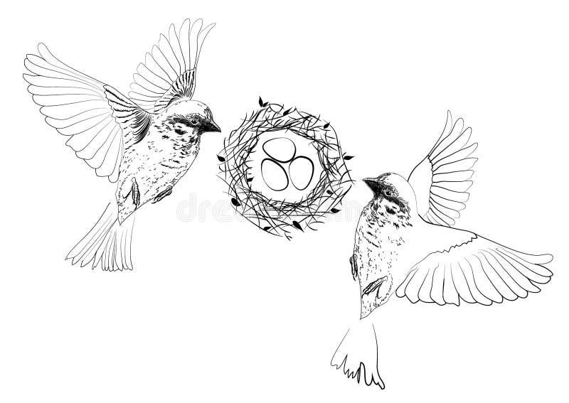 Oiseaux volant près du nid avec des oeufs illustration de vecteur
