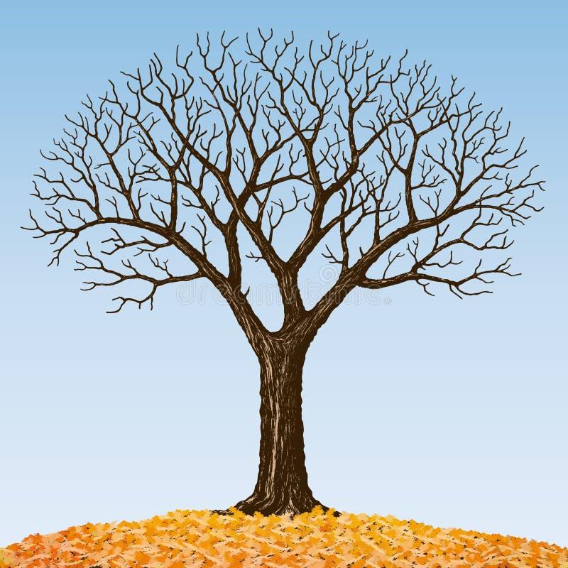 oisolerad tree royaltyfri illustrationer