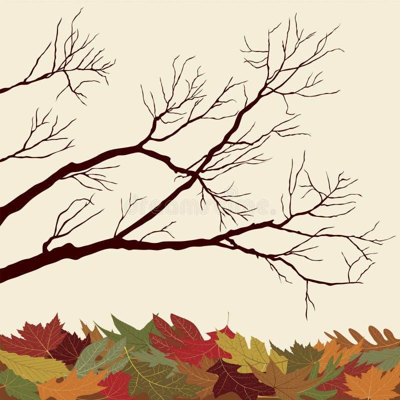 oisolerade filialer fallna leaves stock illustrationer