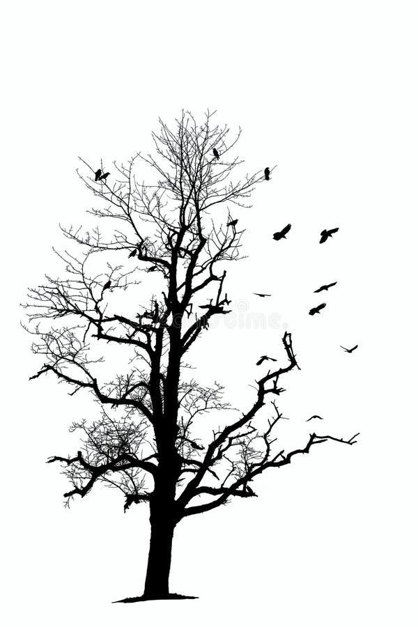 Oisolerade tree och fåglar royaltyfri illustrationer