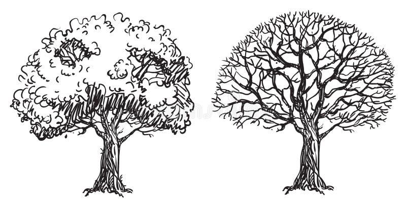 oisolerade trees royaltyfri illustrationer