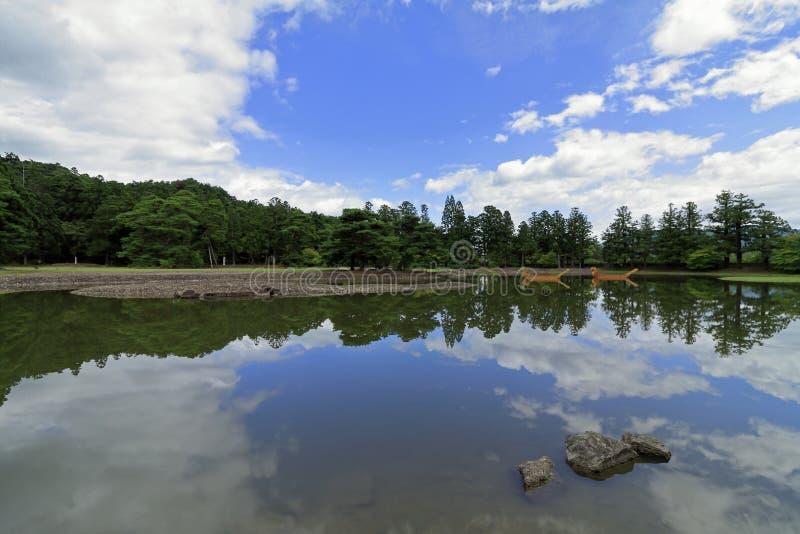 Oizumi ga ike pond of Motsu temple in Hiraizumi. Iwate, Japan royalty free stock photos