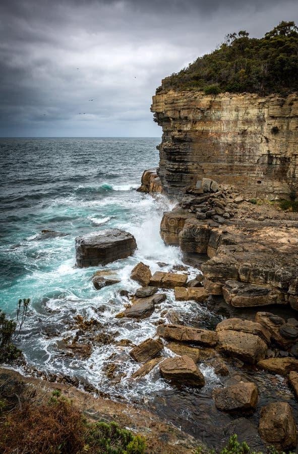 Ojämn kustlinje på den Tasman bågeblåshålet, nära Port Arthur T fotografering för bildbyråer