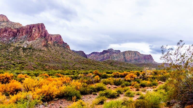 Ojämna berg längs Saltet River i centrala Arizona i Amerikas förenta stater arkivfoton